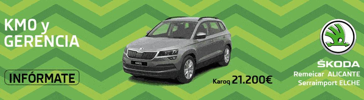 Promoción Skoda Km.0 y Gerencia - 3